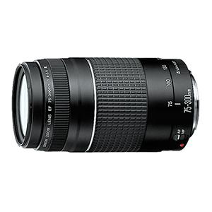 canon 75 300mm telephoto lens