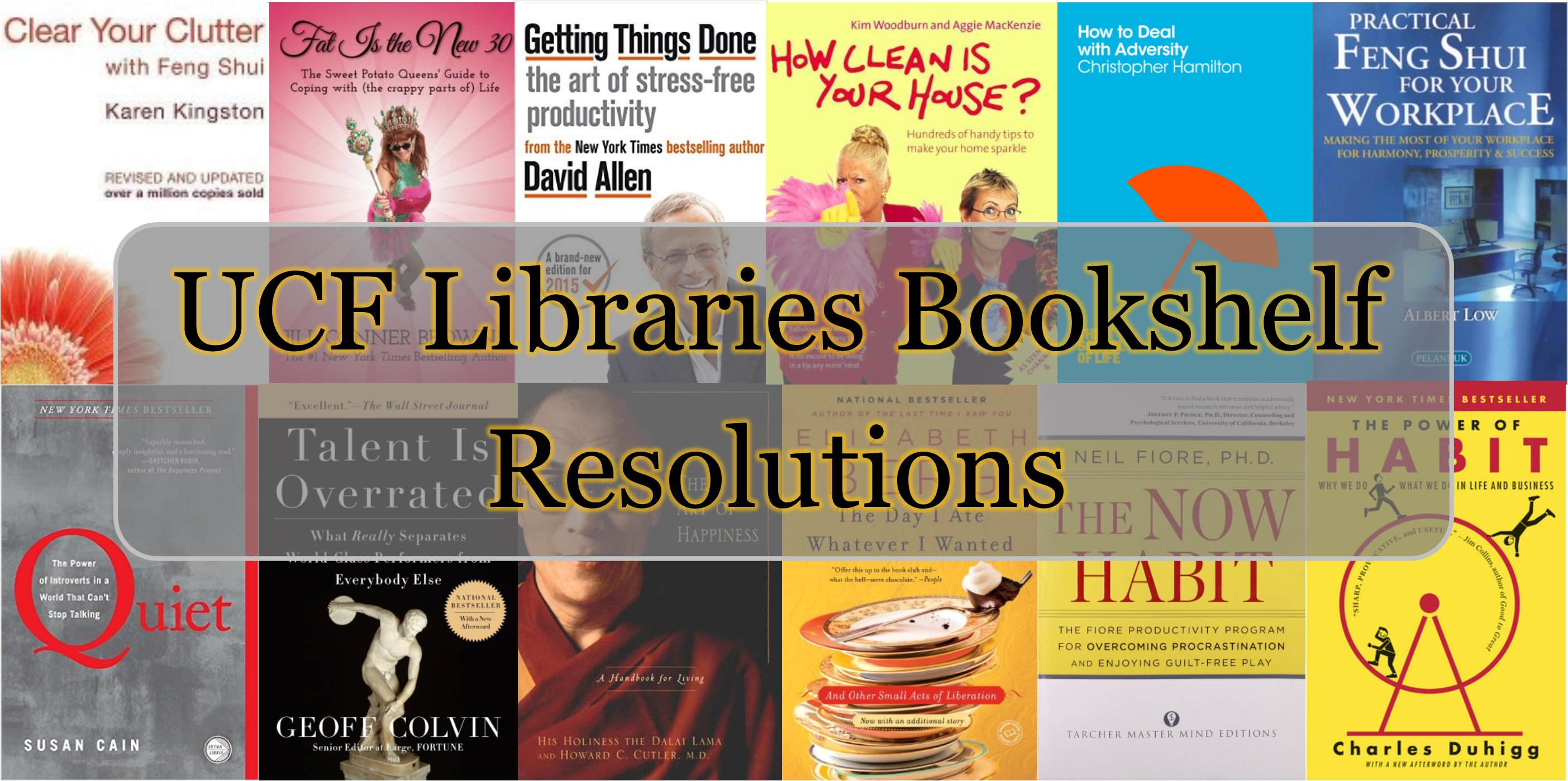 Libraries Bookshelf Resolutions