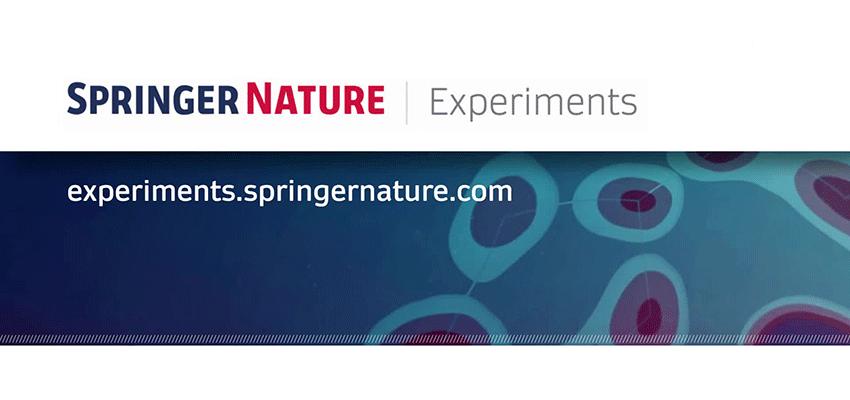 Springer Nature Banner